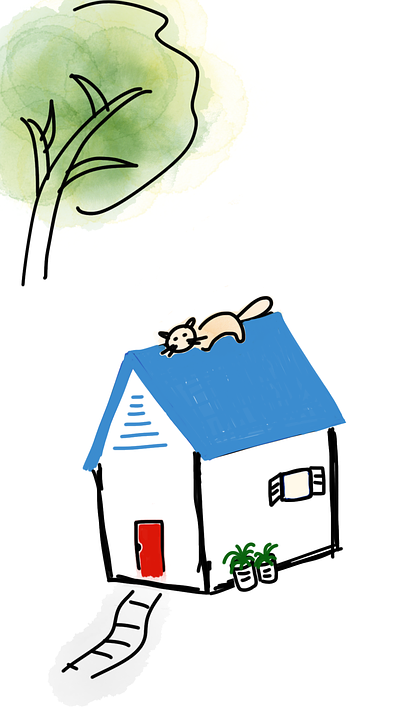 cat-on-roof-1379688_960_720
