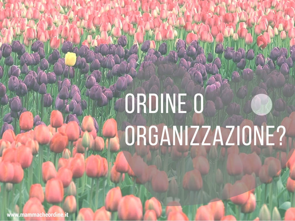 Ordine o organizzazione